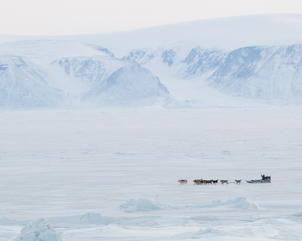 traineau_glacier_qaanaaq_sled (3)